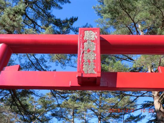 Funatsu Tainai Jugata Lava Tree Mold