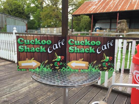 Polegate, UK: Cuckoo shack pictures