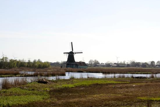 Zaanstad, The Netherlands: Depuis la route N 515