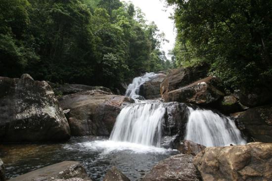 anagimale waterfall picture of kanneliya mount resort galle rh tripadvisor co uk