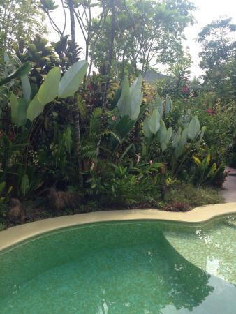 Ojochal, Kosta Rika: photo0.jpg