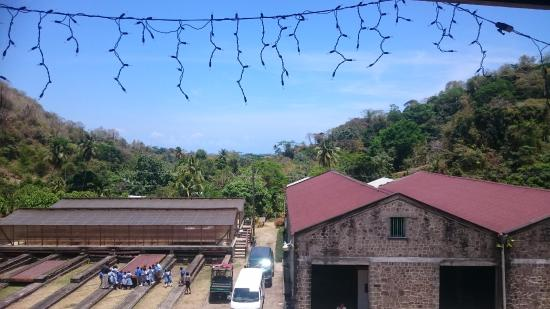 Belmont, Grenada: View from the restaurant