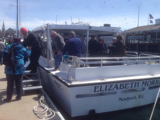 Save The Bay Seal Watch & Nature Cruises: photo1.jpg