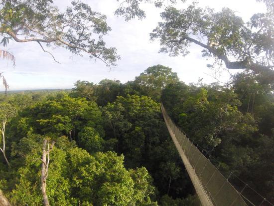 Amazon Explorama Lodges: photo1.jpg