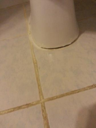 Artic Hotel: Toilet not fixed to the floor properly