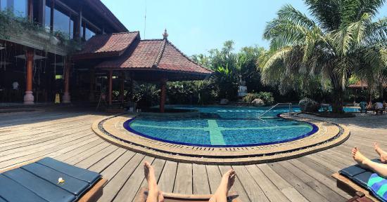 Bhuwana Ubud Hotel: Net zwembad