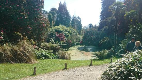 St Austell, UK: Walk round the Gardens