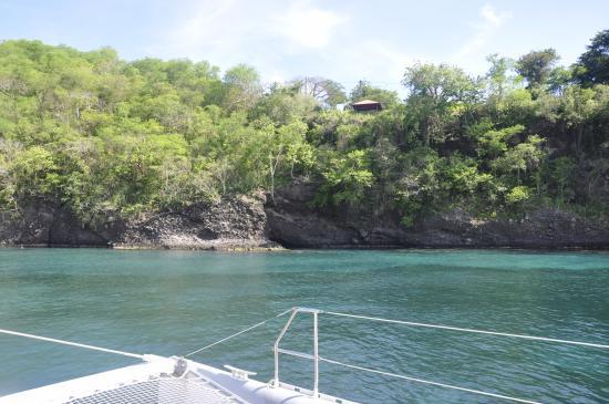 Trois-Ilets, Martinique: Arrêt dans ce magnifique lieu pour voir les tortues avec la Cata Créole