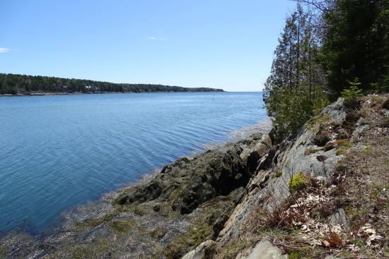 Orrs Island, ME: Gun Point Cove looking south