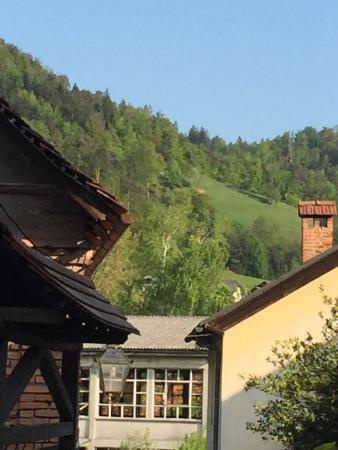 Kamnik, Eslovênia: В Средневековье город был важным торговым центром, до 13 века превосходил Любляну. Сохранилось у