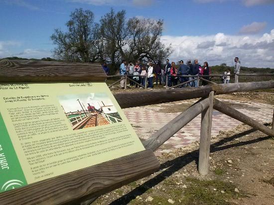 Puerto Real, Испания: Parque Metropolitano Pinar de La Algaida y marisma de Los Toruños, Parque Natural Bahía de Cádiz