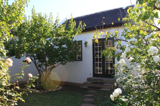 McGregor, Sudáfrica: and in a rose garden