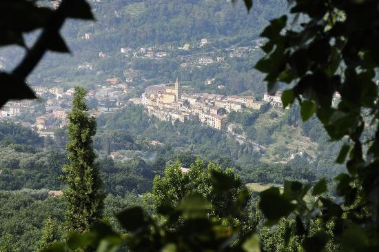 Hotel Beausejour: The view of Contes from Berre-les-Alpes