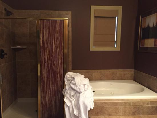 Hamburg, Nueva Jersey: Big shower and tub (and out family's pile of towels upon check out)
