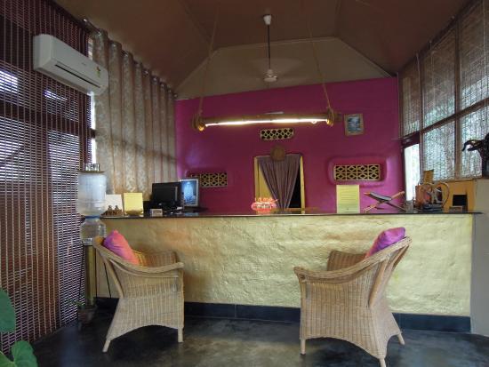 The Bohemian Masala: Reception
