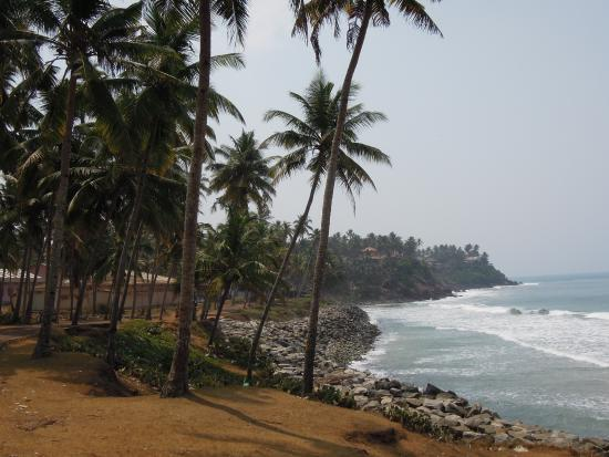 The Bohemian Masala: Black Beach