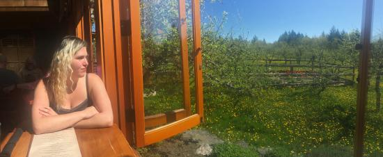 Cobble Hill, Canada: Lunch overlooking the orchards.