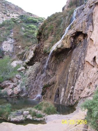 Sitting Bull Falls: The falls and pools below