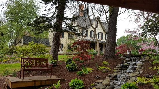John Stam House : Enjoying the lovely waterfall feature evening and afternoon
