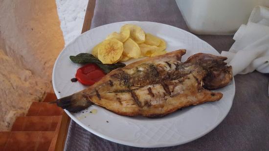 Restaurante Bodega El Churro