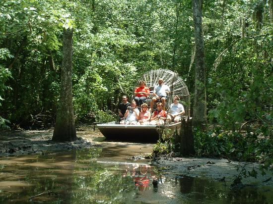 Sebring, FL: Air boat tours