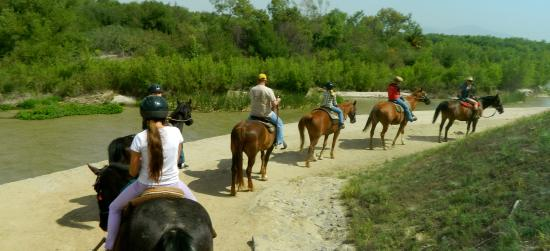 Sebring, FL: Horseback riding