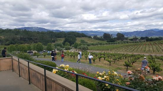 Geyserville, CA: Francis Ford Coppola Winery