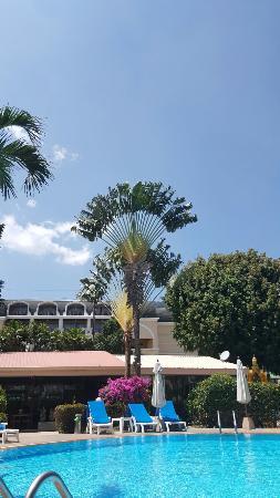 Swiss Palm Beach : 20160419_134245_large.jpg