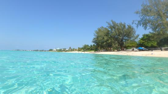 Cemetery Beach And Reef
