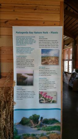 Matagorda, TX: Inside the Nature Center