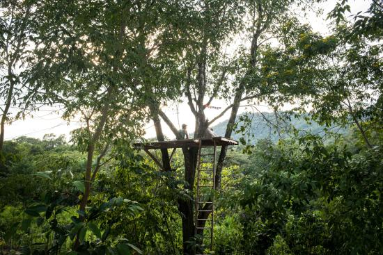 El Remate, Guatemala: Treehouse