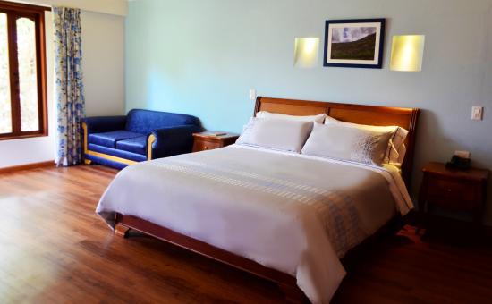 Hotel Casa del Arbol
