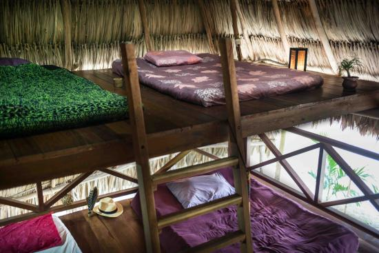El Remate, Guatemala: Dorm Open Space