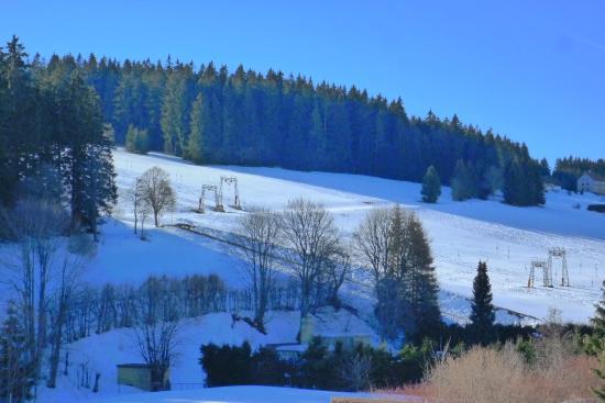 Gasthof Schwarzwaldtanne: Vue d'une chambre