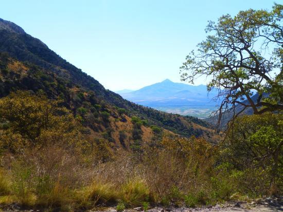 Hereford, AZ: Mountain drive