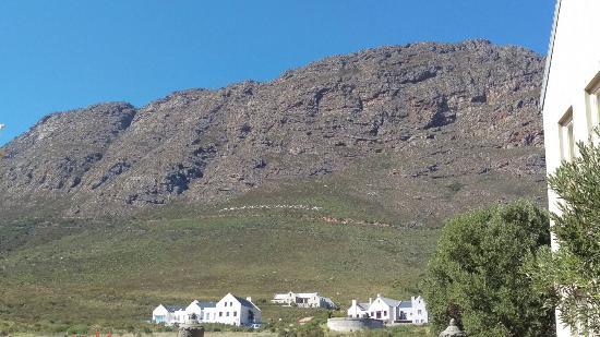 Franschhoek, Sudáfrica: IMAG2329_large.jpg
