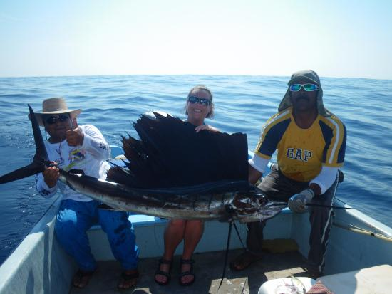 Guerrero, Mexico: sailfish