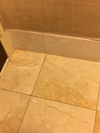 Holiday Inn Baltimore-Inner Harbor: cracks in the tiles?