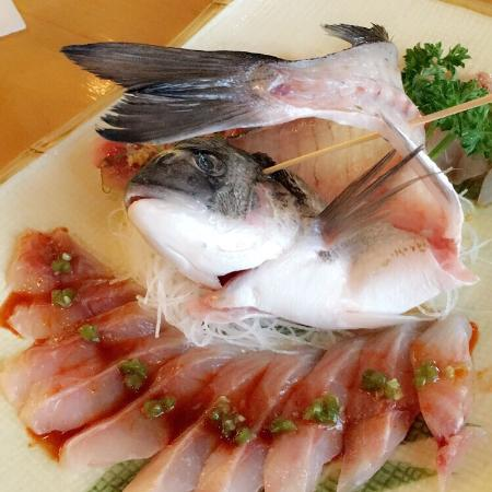 Picture of sushi sono columbia tripadvisor for Best fish for sushi