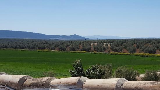 Mollina, Spanyol: 20160329_144147_large.jpg
