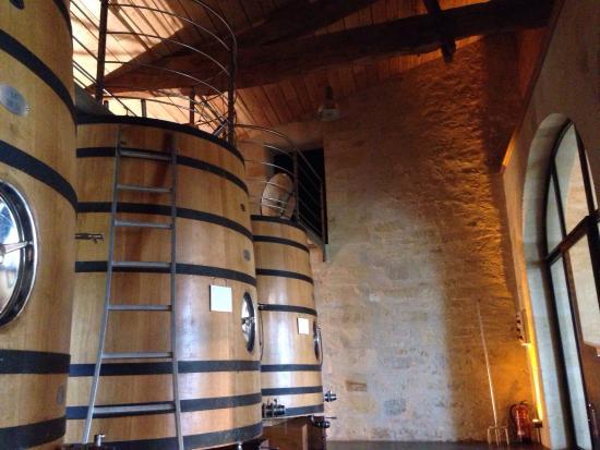 Chateau de Mole: Une belle visite du château