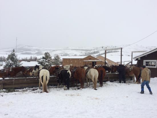 C Lazy U Ranch: photo1.jpg