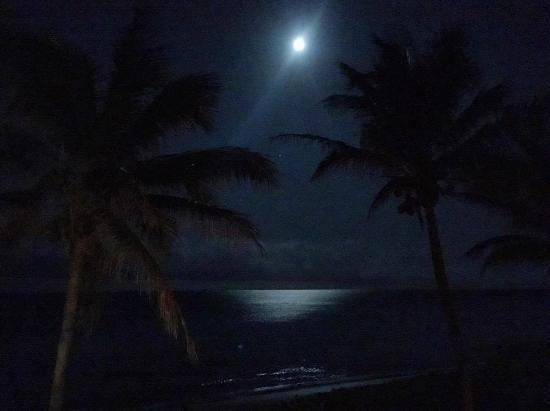 Hillsboro Beach, Floryda: Vista noctura desde la habitacion OCEANFRONT ONE BEDROOM.