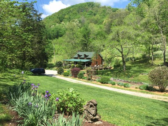 Gordonsville, TN: Butterfly Hollow