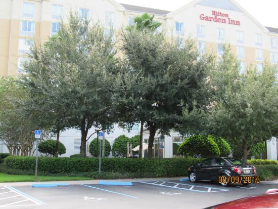 Fachado Do Hotel Hilton Garden Inn Orlando At Seaworld Tripadvisor