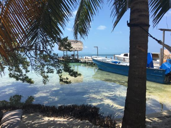 Glovers Reef Atoll, Belice: photo0.jpg