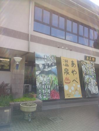 Ayabe Onsen Niokan