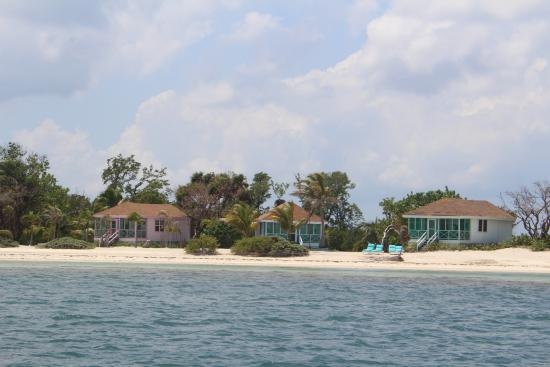 Turneffe Island Foto