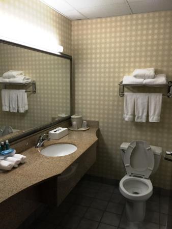 هوليداي إن إكسبريس دورهام: Bathroom