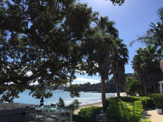 Kawau Island, Nowa Zelandia: photo4.jpg